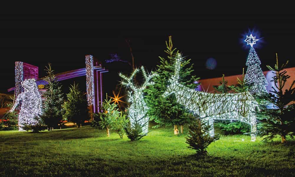 Décoration de Noël animaux villes communes